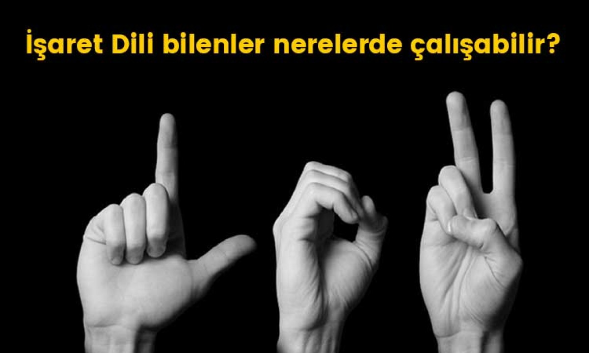 İşaret dili bilenler nerelerde çalışabilir?