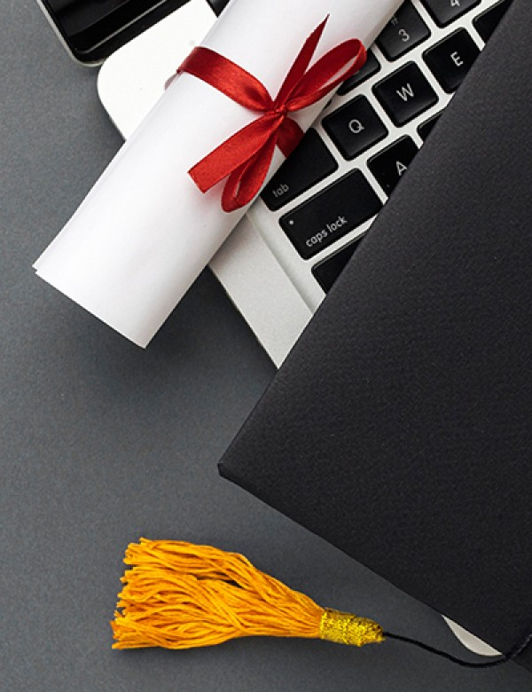 İnternetten Alınan Sertifikalar İşe Yarar Mı?