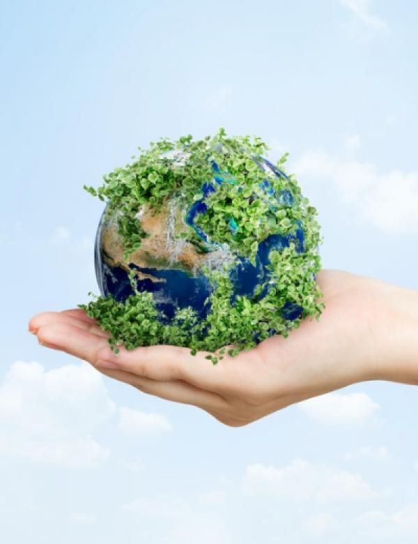 Yeşil Mutabakat Nedir? Planın Esasları Nelerdir?